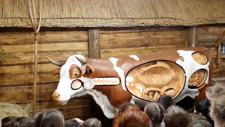 Экскурсия для школьников, сырки Александров, макет говорящей коровы, изображение